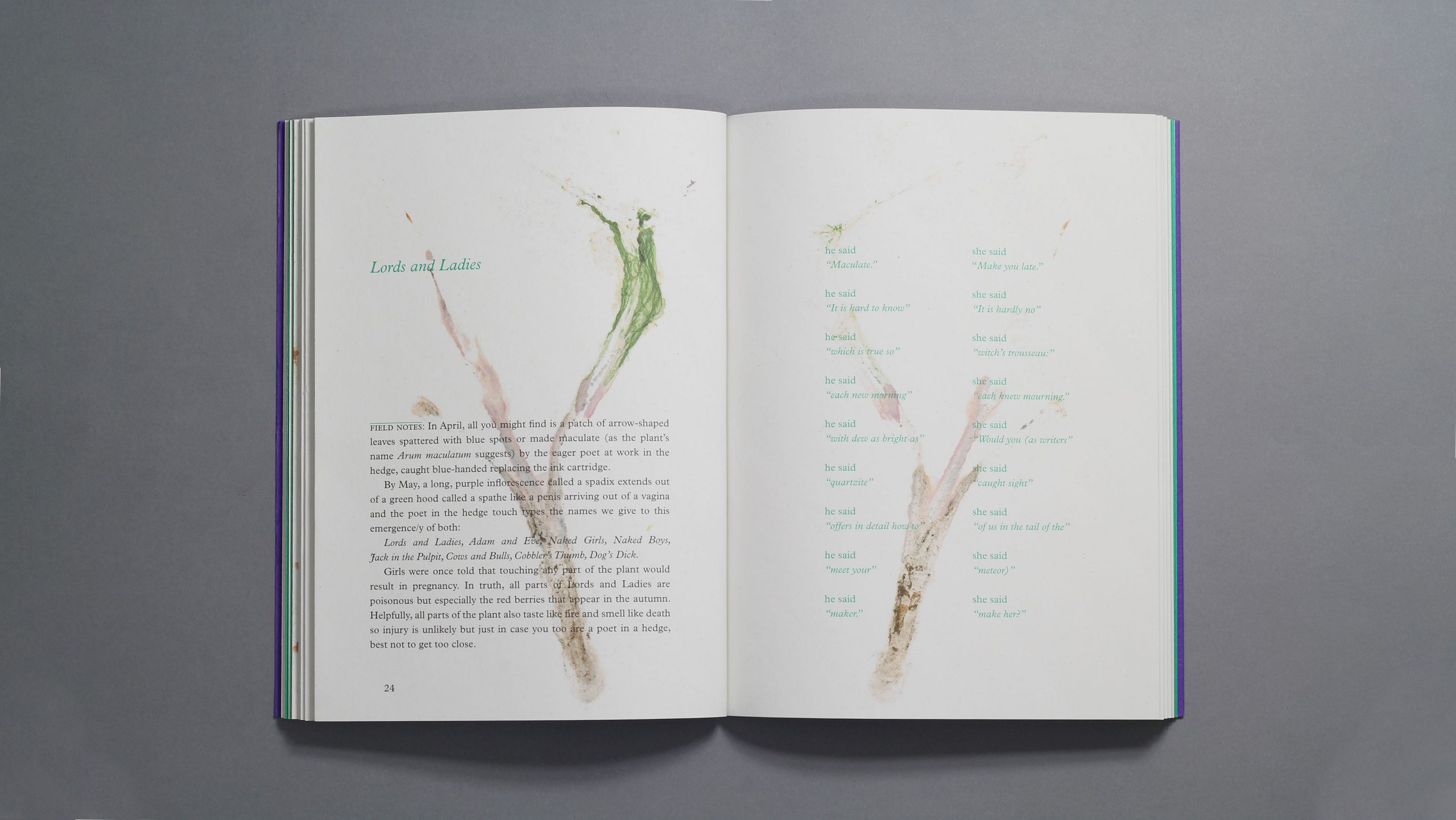 Inside spread of a book called Indifferent Cresses design by City Edition Studio for Holly Corfield Carr and the National Trust