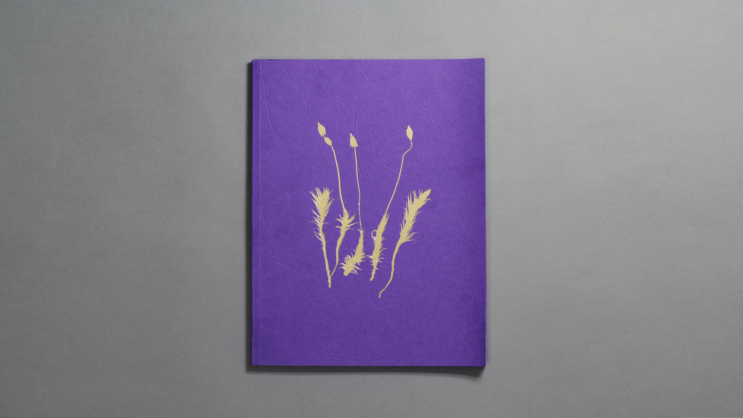 Front cover of a book called Indifferent Cresses design by City Edition Studio for Holly Corfield Carr and the National Trust